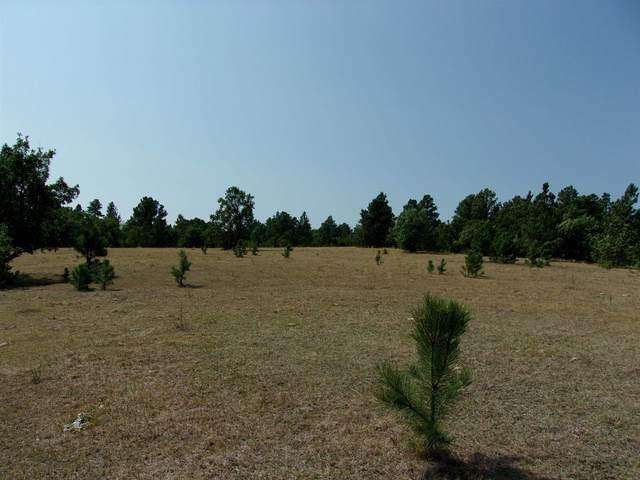 TBD Oak Ridge Road, Sturgis, SD 57785 (MLS #69608) :: Dupont Real Estate Inc.