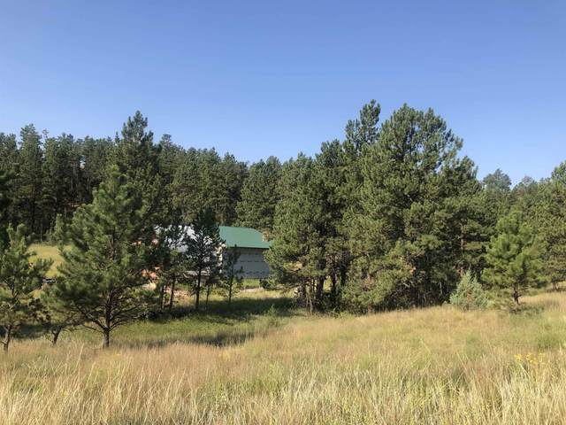 27176 Big Valley Road, Hot Springs, SD 57747 (MLS #69649) :: Dupont Real Estate Inc.