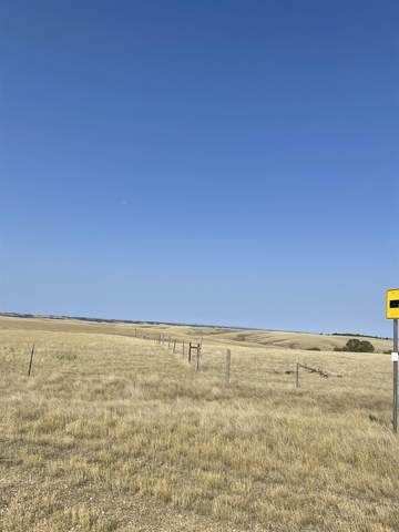 TBD Rehorst Rd., Belle Fourche, SD 57717 (MLS #69668) :: Dupont Real Estate Inc.