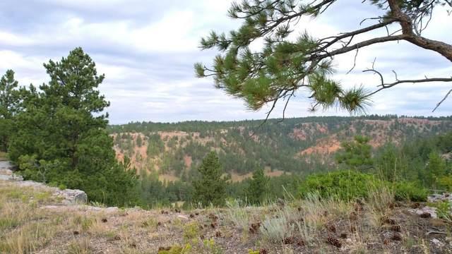 Camp Lakota 2 Red Canyon Road, Custer, SD 57730 (MLS #69676) :: Dupont Real Estate Inc.