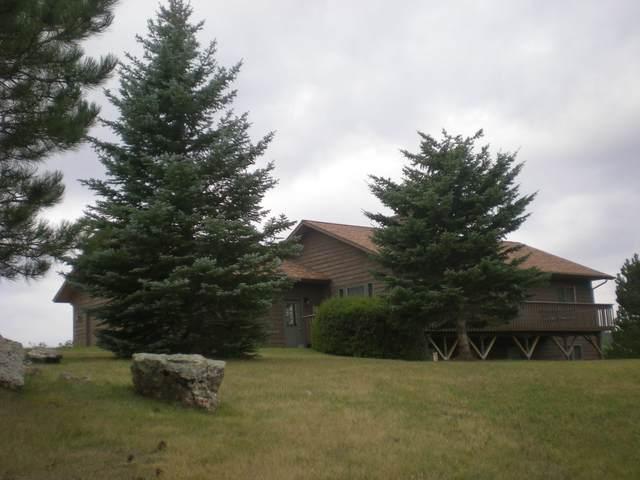 25123 Granite Heights Drive, Custer, SD 57730 (MLS #69678) :: Christians Team Real Estate, Inc.