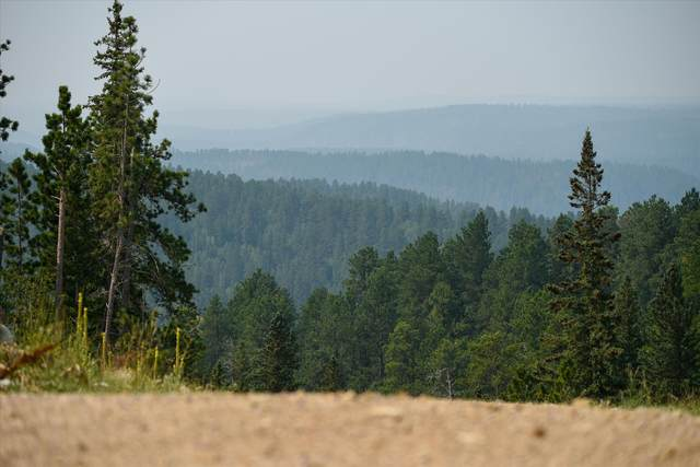 Lot 14 Block 10 Other, Lead, SD 57754 (MLS #69689) :: Christians Team Real Estate, Inc.