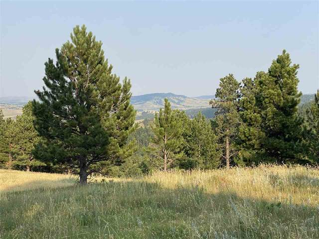 tbd lot 10 Other, Whitewood, SD 57793 (MLS #69794) :: Dupont Real Estate Inc.