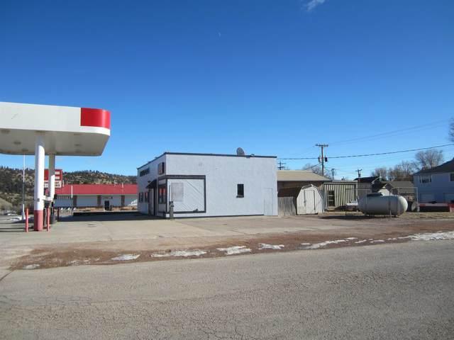 137 S 17th Street, Hot Springs, SD 57747 (MLS #69806) :: VIP Properties