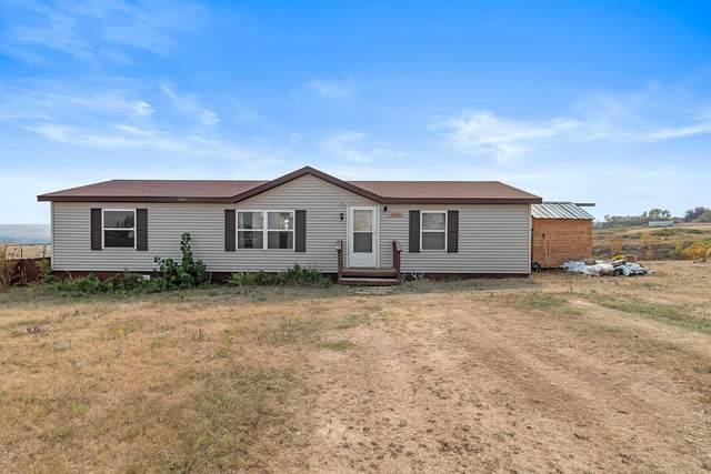 11049 Blue Bell Loop, Belle Fourche, SD 57717 (MLS #69825) :: VIP Properties