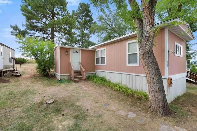 717 Christensen Drive, Spearfish, SD 57783 (MLS #69855) :: VIP Properties