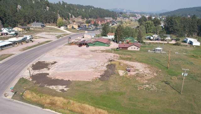 750 W Mt. Rushmore Road, Custer, SD 57730 (MLS #69870) :: VIP Properties