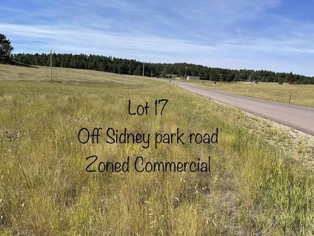 LOT 17 Sidney Park Road, Custer, SD 57730 (MLS #69885) :: Black Hills SD Realty