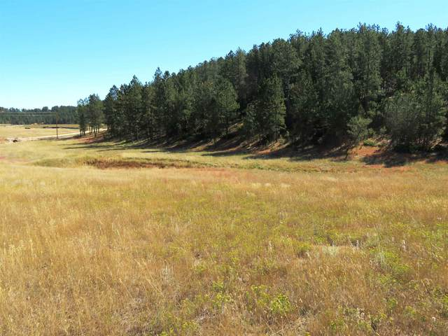 TBD Gold Rush Address Not Published, Custer, SD 57730 (MLS #69887) :: Black Hills SD Realty