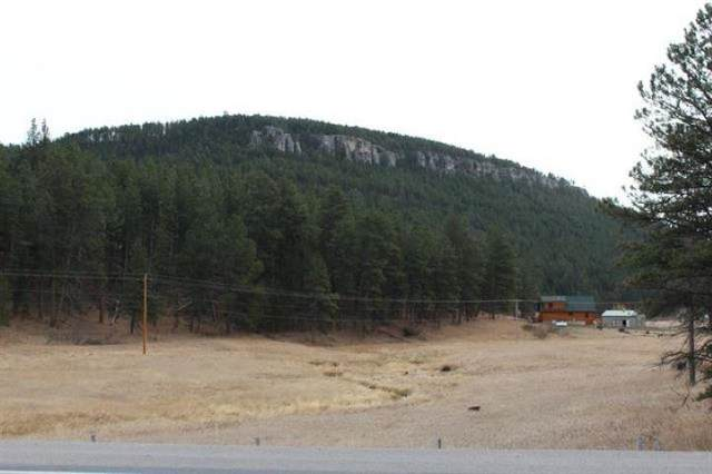 12688 Nemo Road, NEMO, SD 57759 (MLS #69889) :: Black Hills SD Realty