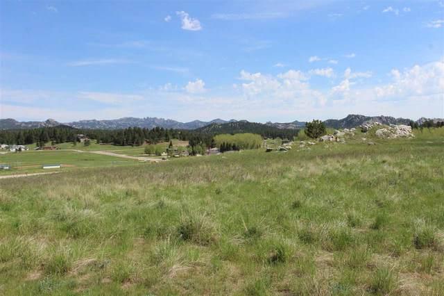 Lot 24 Rose Quartz Place, Custer, SD 57730 (MLS #69922) :: Dupont Real Estate Inc.