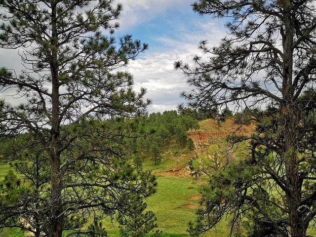 Lot 3 Bbcr Road, Belle Fourche, SD 57717 (MLS #69930) :: Christians Team Real Estate, Inc.