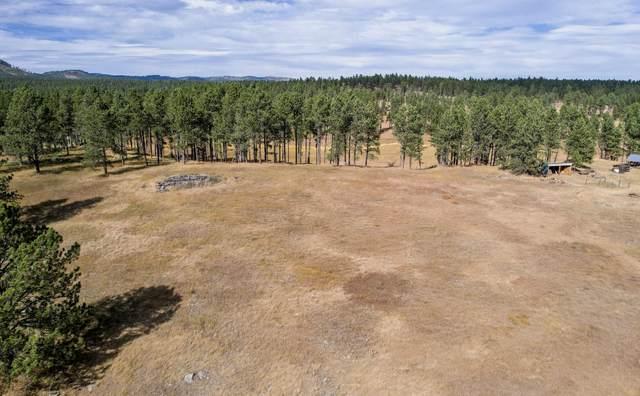 TBD Big Valley Trail, Custer, SD 57730 (MLS #70022) :: Daneen Jacquot Kulmala & Steve Kulmala