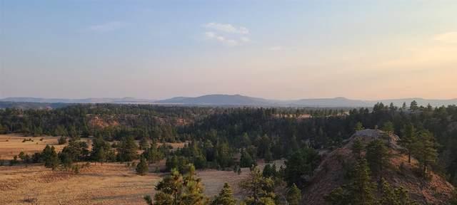 Orion's Ridge 3 Elk Run, Custer, SD 57730 (MLS #70113) :: VIP Properties