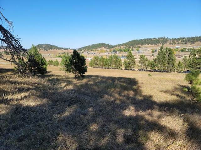 TBD Pleasant Valley Road, Sturgis, SD 57785 (MLS #70114) :: Dupont Real Estate Inc.
