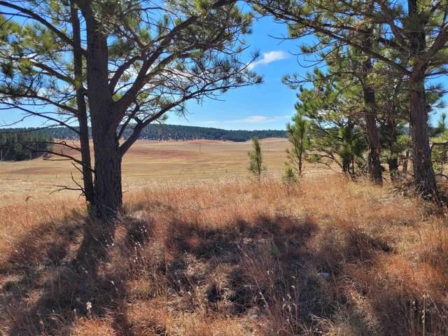 Lot #1 Bluegrass Drive, Pringle, SD 57773 (MLS #70116) :: Black Hills SD Realty