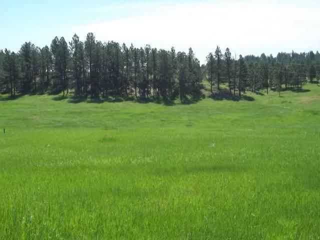 TBD Address Not Published, Custer, SD 57730 (MLS #70123) :: VIP Properties