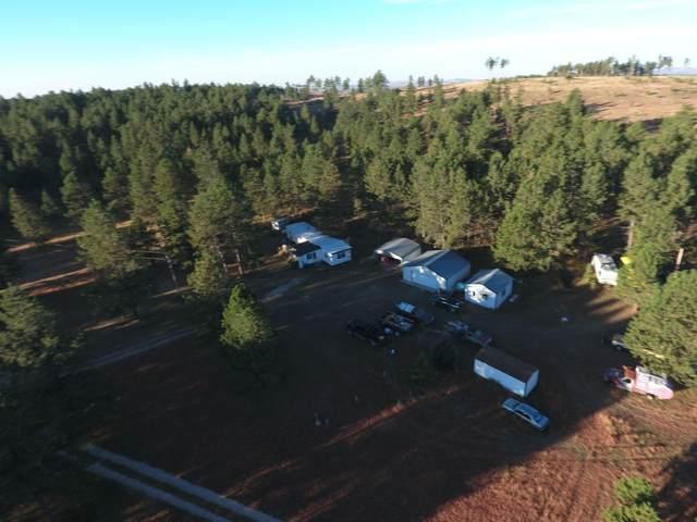 25507 Jewell Road, Custer, SD 57730 (MLS #70130) :: Black Hills SD Realty
