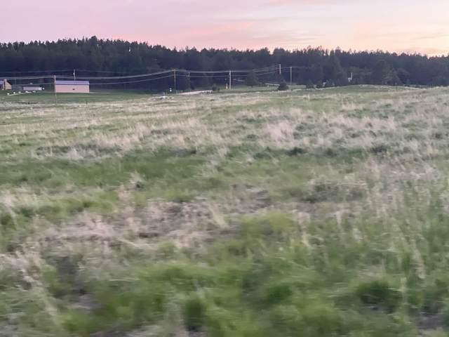 Lot 37 Stone Hill, Custer, SD 57730 (MLS #70156) :: VIP Properties