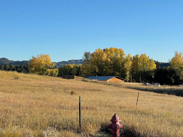 Lot 10 Agate Lane, Custer, SD 57730 (MLS #70159) :: VIP Properties