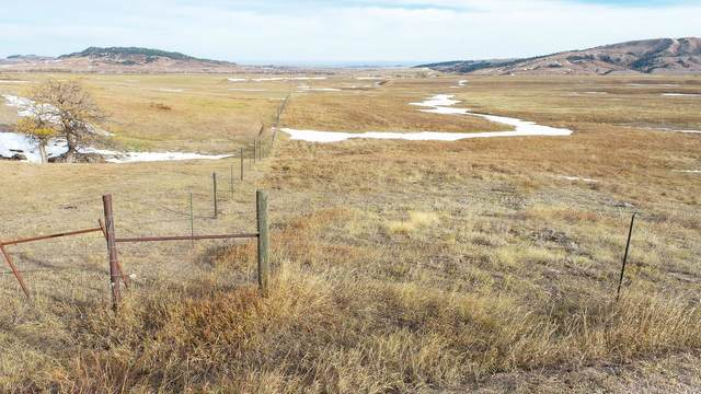 TBD Pendo Road, Spearfish, SD 57783 (MLS #70188) :: Black Hills SD Realty