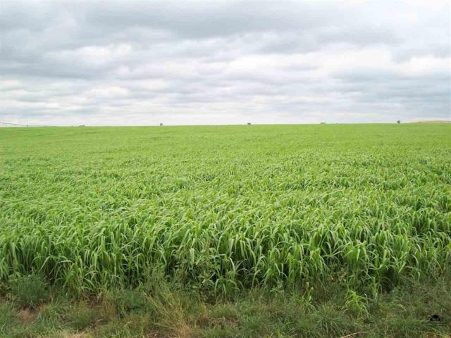 oo Palo Road, Newell, SD 57760 (MLS #49016) :: Christians Team Real Estate, Inc.