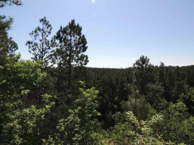 Lot 2R Saddleback, Hermosa, SD 57744 (MLS #51088) :: Christians Team Real Estate, Inc.