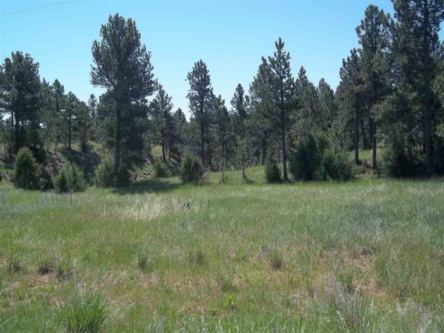 TBD Hombre Trail, Custer, SD 57730 (MLS #53065) :: Christians Team Real Estate, Inc.
