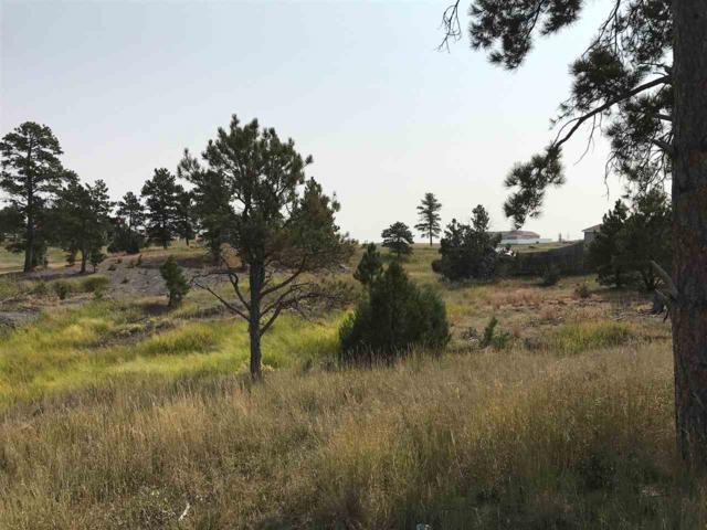 74 Pendleton Drive, Pine Haven, WY 82721 (MLS #53412) :: Christians Team Real Estate, Inc.