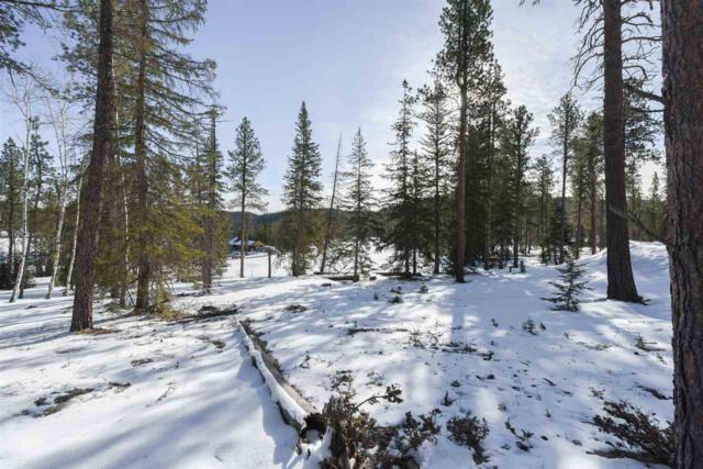 Lot 1 Mulligan Court, Lead, SD 57754 (MLS #53671) :: Christians Team Real Estate, Inc.