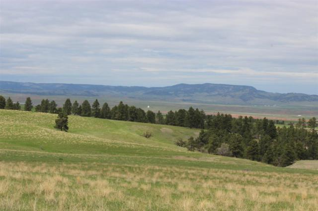 TBD Rifle Pit Road, Beulah, WY 82712 (MLS #54603) :: Christians Team Real Estate, Inc.
