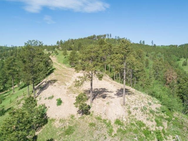 Lot 1 Two Bit Road, Deadwood, SD 57732 (MLS #55220) :: Christians Team Real Estate, Inc.