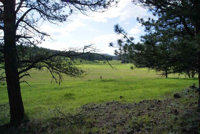 Tract 9B Sidney Trail, Custer, SD 57730 (MLS #55257) :: Christians Team Real Estate, Inc.