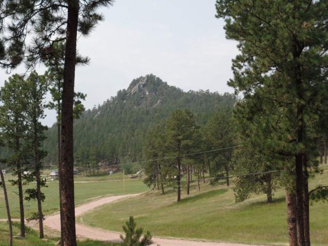 Lot 5 Deadwood Trail, Custer, SD 57730 (MLS #55889) :: Christians Team Real Estate, Inc.