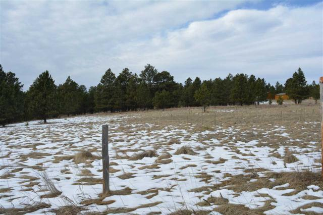 TR 13 Us Hwy 89, Pringle, SD 57773 (MLS #56539) :: Christians Team Real Estate, Inc.
