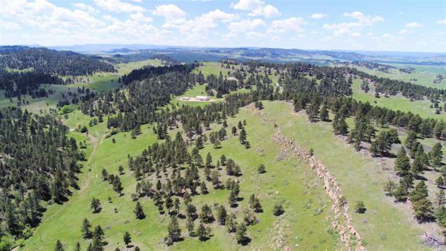 19208 Elk Run Lane, Belle Fourche, SD 57717 (MLS #57072) :: Christians Team Real Estate, Inc.