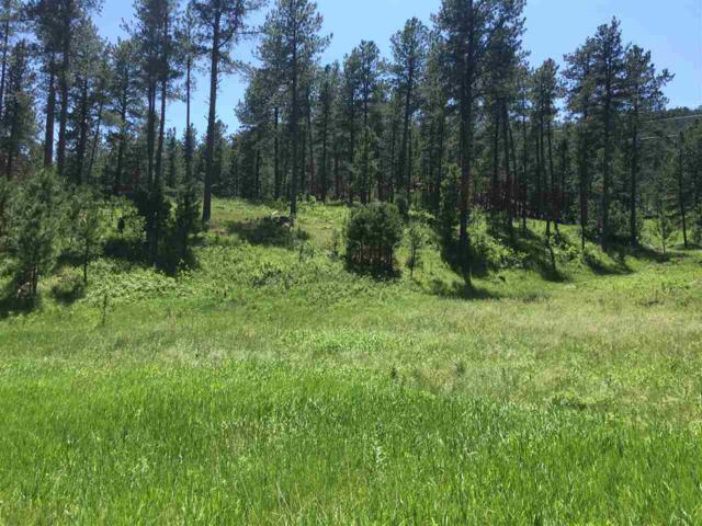 Tract 12 Sherry Drive, Pringle, SD 57773 (MLS #57189) :: Christians Team Real Estate, Inc.