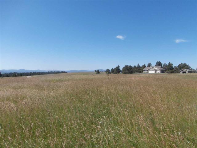 Lot 12A Block 1 Hat Ranch Drive, Belle Fourche, SD 57717 (MLS #57297) :: Christians Team Real Estate, Inc.