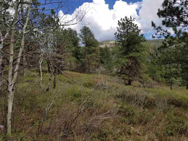 TBD Last Chance Trail, Lead, SD 57754 (MLS #57839) :: Christians Team Real Estate, Inc.
