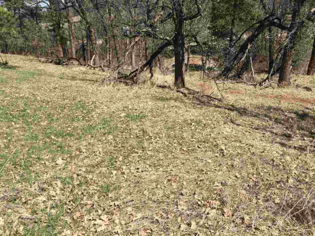 Lot 31, Block 5 Oak Drive, Whitewood, SD 57793 (MLS #57971) :: Christians Team Real Estate, Inc.
