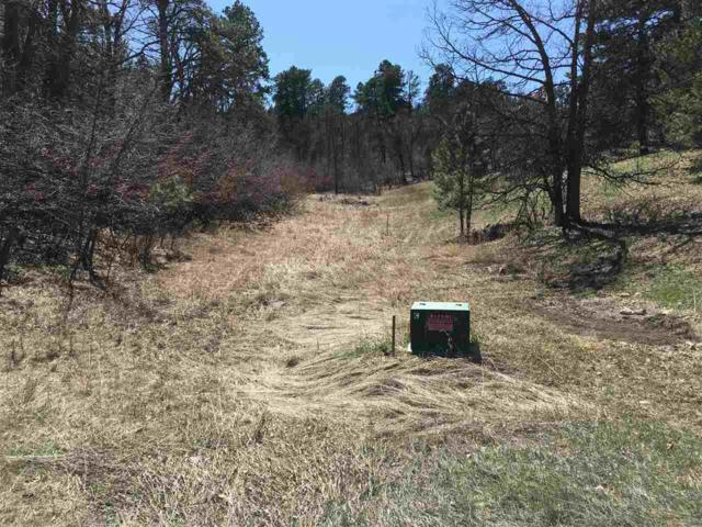 Lot 24, Block 5 Butte Court, Whitewood, SD 57793 (MLS #57983) :: Christians Team Real Estate, Inc.