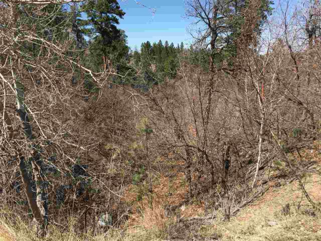 Lot 4, Block 4 Ravine Court, Whitewood, SD 57793 (MLS #57986) :: Christians Team Real Estate, Inc.