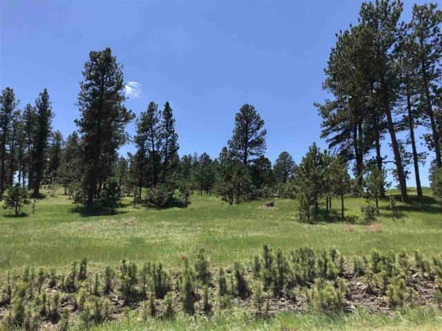 Lot 27 Pilot  Road, Custer, SD 57730 (MLS #58121) :: Christians Team Real Estate, Inc.
