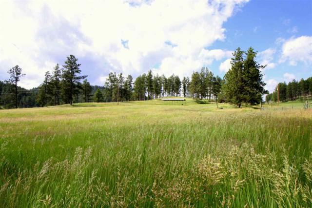 TBD Lot 2 Golden Willow Parkway, Custer, SD 57730 (MLS #58621) :: Christians Team Real Estate, Inc.