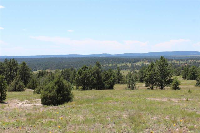 Lot 2 Lariat Road, Custer, SD 57730 (MLS #58722) :: Christians Team Real Estate, Inc.