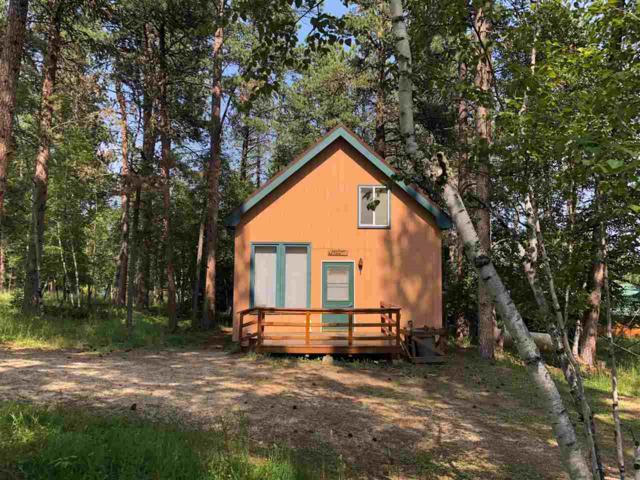 21378 Mule Deer Drive, Lead, SD 57754 (MLS #59150) :: Christians Team Real Estate, Inc.