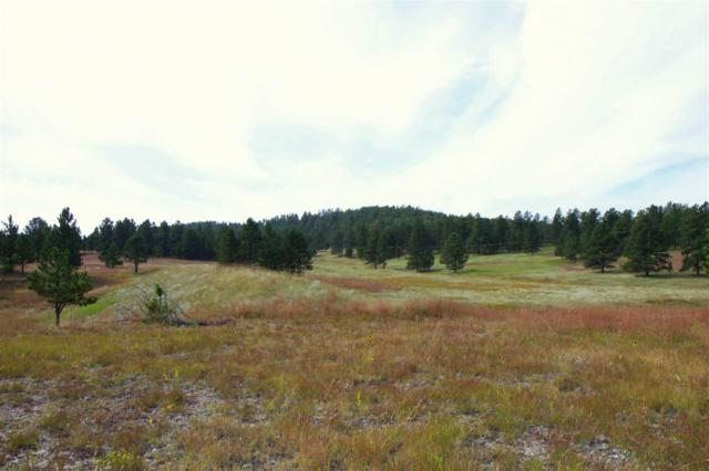 TBD Tract 22 Lone Elk Drive, Hot Springs, SD 57747 (MLS #59421) :: Christians Team Real Estate, Inc.