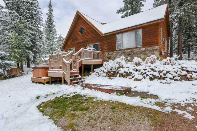 11034 Whitetail Trail, Lead, SD 57754 (MLS #59642) :: Christians Team Real Estate, Inc.