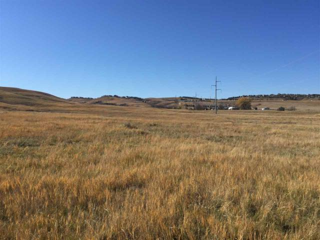 TBD Catron Boulevard, Rapid City, SD 57701 (MLS #59687) :: Christians Team Real Estate, Inc.