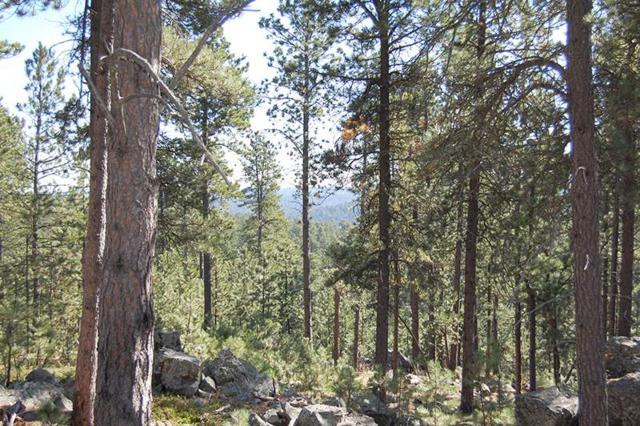 11805 Gilt Edge Road, Deadwood, SD 57732 (MLS #59943) :: Christians Team Real Estate, Inc.